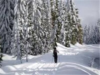 Endless Cross country Skiing Trails