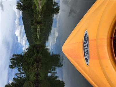 Kayaking Icicle River is so relaxing.