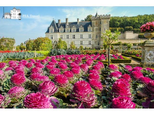 Gardens of Loire Castle