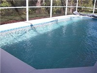 Sparkling pool that backs to conservation area