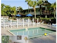 Magic Tree Resort  Properties
