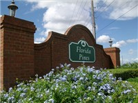Florida Pines Subdivision  Properties