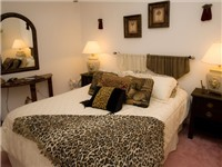 This themed room has a Queen sized bed and a walk in wardrobe plus an en-suite fully fitted bathroom. This room is in the 2nd wing of the villa and has its own TV and DVD player