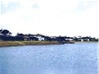 Lovely lake on property