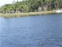 Lovely lake in the Season's community