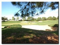 Lovely view of golf course