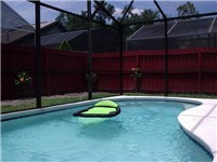 Sparking Private Fence Pool