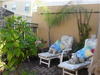 Loungers / Patio / Spa