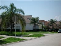 Lake Davenport Estates  Beautiful palm tree lined streets.