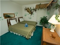 Twin Bedroom / Safari Room / Adult size Twins