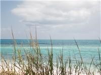 Atlantic Beach just minutes away