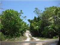 Drive way to the Atlantic Beach