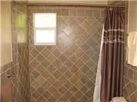 Walk in shower - guest bathroom
