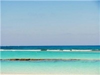 Bita Bay Beach - Beach in Green Turtle Cay