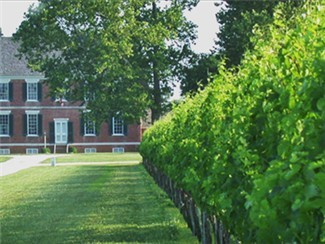 A local lure for wine connoisseurs and vacationeers alike, Chatham Vineyard