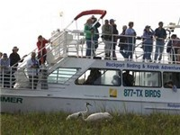 Whooping Crane Boat Cruise - Tours in Rockport