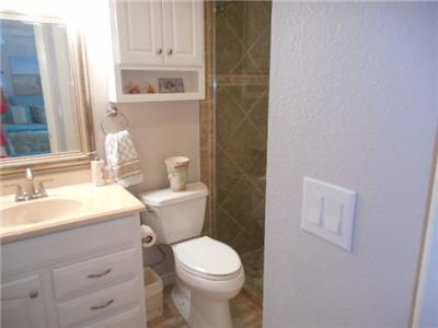 Guest bathroom - Walk in shower