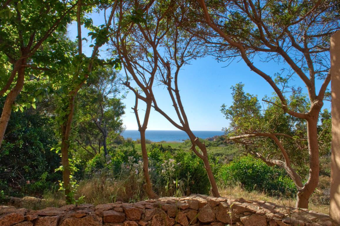 Ferienwohnung Cottage-Apartment On The Coast Surrounded By Unspoilt Nature (2230692), Canneddi, Olbia-Tempio, Sardinien, Italien, Bild 1