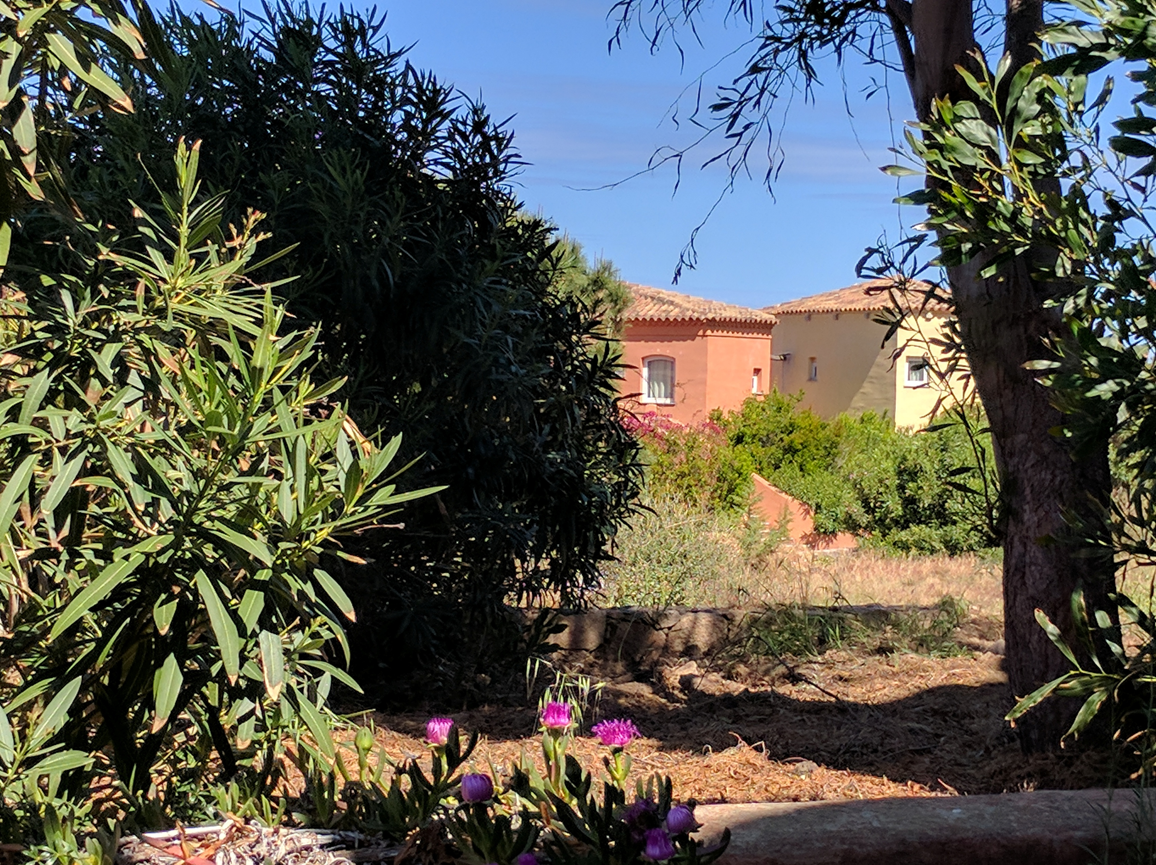 Ferienwohnung Cottage-Apartment On The Coast Surrounded By Unspoilt Nature (2230692), Canneddi, Olbia-Tempio, Sardinien, Italien, Bild 5