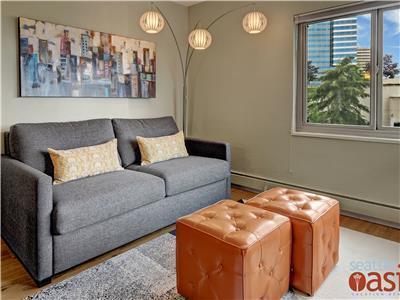 Queen sized sleeper sofa maximizes space.