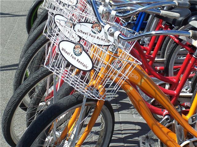 Alki, Wheel Fun Bike Rentals