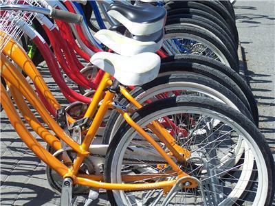 Alki, Bike Rentals