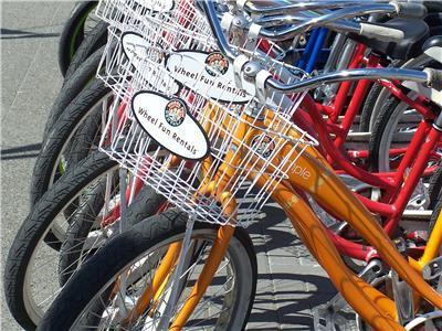 Alki, Wheel Fun Bike Rentals