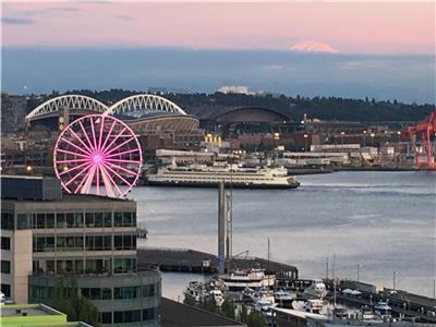 Seattle Pink Wheel