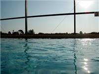 Care for a dip in the Florida Sunshine?