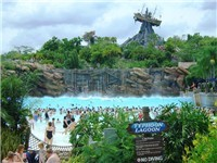 Disney's Typhoon Lagoon - Water Park in