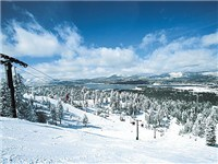 Ski Cabins Properties