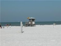 in Clearwater Beach
