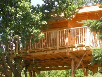 Tree House in Manta