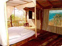 Tree House in Zihuatanejo