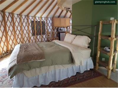 Yurts in Big Flat