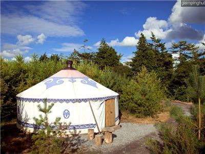 Yurt Rentals United Kingdom Accommodations