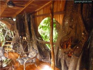 Tree House in Cahuita