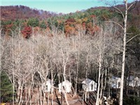 Cabins in Blairsville