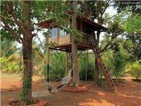 Cabins | Tree Houses | Tents |  in Ratnagiri