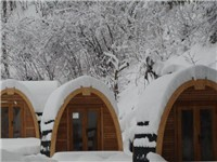 Cabins in Flims