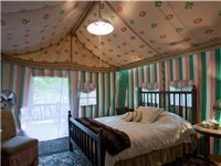 Luxury Tents in Ellijay