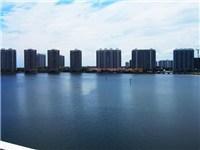 A Miami Beach Condo with Spectacular Views