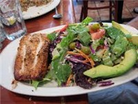 Wide Variety of Salads are Available!