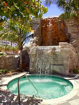 Beautiful Jacuzzi with waterfalls