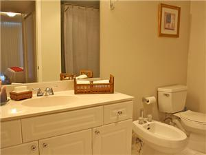 Master Bathroom features a shower & jetted tub