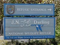 "J. N. ""Ding"" Darling National Wildlife Refuge  - Park And Recreation Area in Sanibel"
