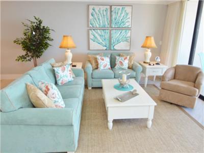 Living Room seating (sleeper sofa)