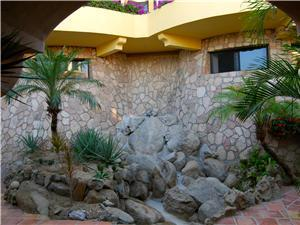 Tropical and desert landscaping