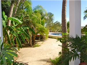 The Villa is tropically landscaped with palms