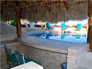 Looking out through the swim up bar palapa